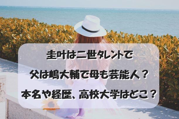 圭叶は二世タレントで父は嶋大輔で母も芸能人?本名や経歴、高校大学はどこ?