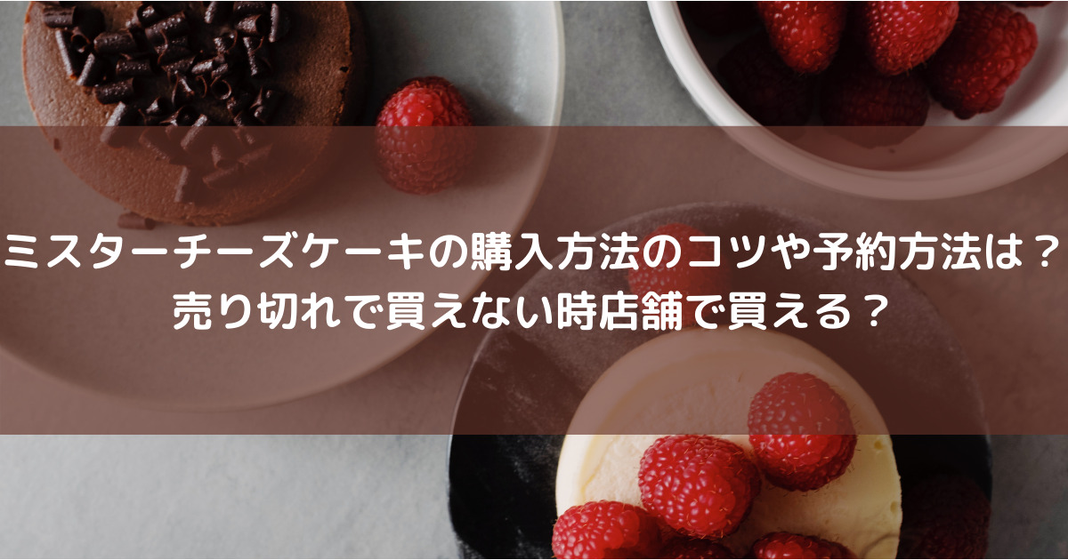 ミスターチーズケーキの購入方法のコツや予約方法は?売り切れで買えない時店舗で買える?
