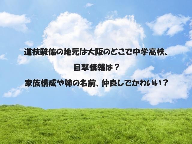 道枝駿佑の地元は大阪のどこで中学高校、目撃情報は?家族構成や姉の名前、仲良しでかわいい?
